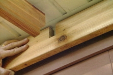 notched beams