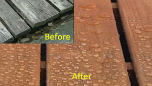 Thompson's WaterSeal Waterproofing Stain - before and after picture