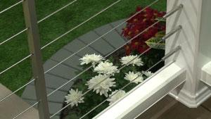 Timbertech cable deck railing enhances views