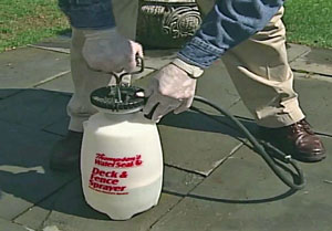 Using a pump sprayer to apply Thompsons WaterSeal 3 in 1 Wood Cleaner