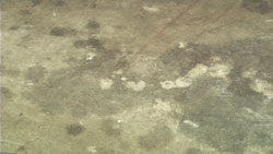 Dirty and stained concrete floor