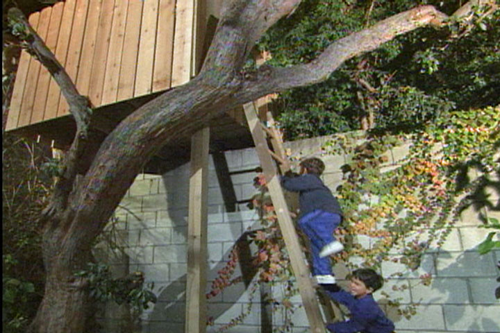 How To Build A Tree House Or Tree Fort Ron Hazelton